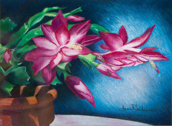 Floral Poster featuring the painting Christmas Cactus by Anne Rhodes