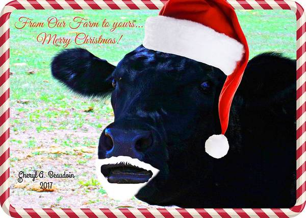 Christmas Poster featuring the photograph Christmas Cow Greeting by Cheryl A Beaudoin