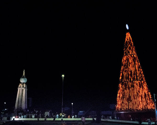 Christmas Tree Poster featuring the photograph Christmas Tree San Salvador 1 by Totto Ponce