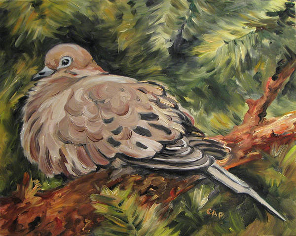 Dove Poster featuring the painting Christmas Turtle Dove by Cheryl Pass