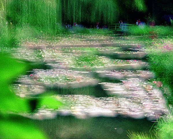 Nature Poster featuring the photograph Claude Monets Water Garden Giverny 1 by Dubi Roman
