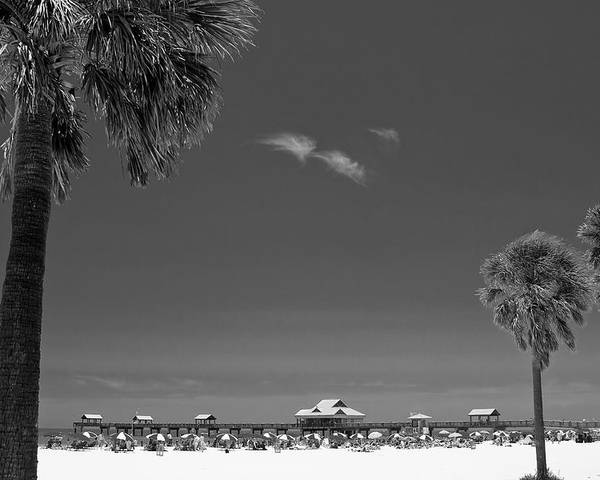 3scape Poster featuring the photograph Clearwater Beach Bw by Adam Romanowicz