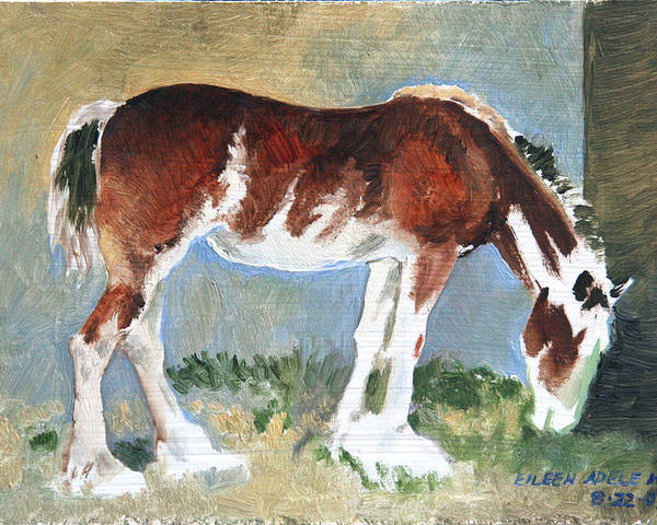Horse Poster featuring the painting Clydesdale Colt Pad by Eileen Hale