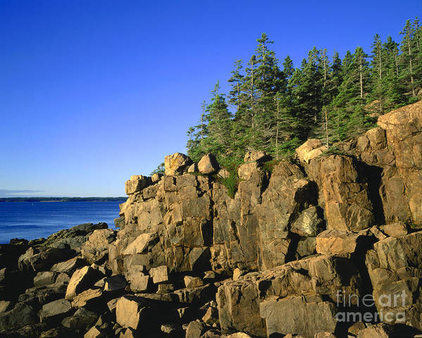 Maine Poster featuring the photograph Coastal Maine by John Greim