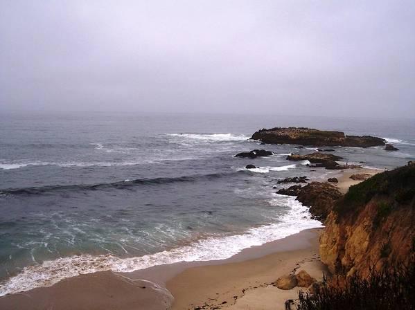 Coast Poster featuring the photograph Coastal Scene 5 by Pharris Art