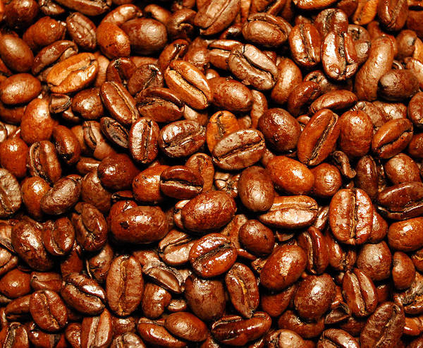 Coffee Poster featuring the photograph Coffee Beans by Nancy Mueller