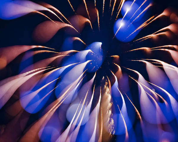 Fireworks Poster featuring the photograph Color Explosion K863 by Yoshiki Nakamura