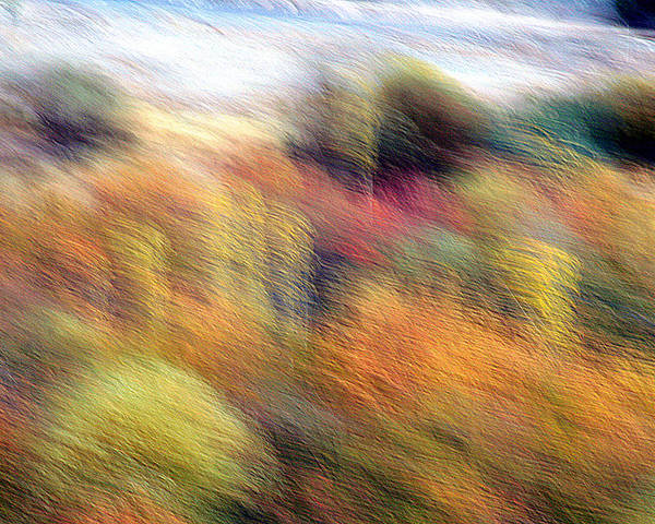 Autumn Poster featuring the photograph Color Play by Robert Shahbazi