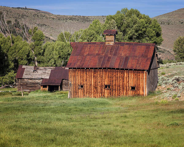 Barns Poster featuring the photograph Colorado Barn 5817 by Maria Struss