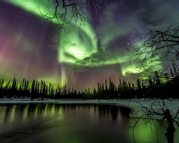 Auroras Poster featuring the photograph Colorful Auroras by Markus Kiili