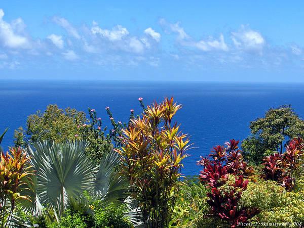 Sea Poster featuring the photograph Colorful Coast by Nicole I Hamilton
