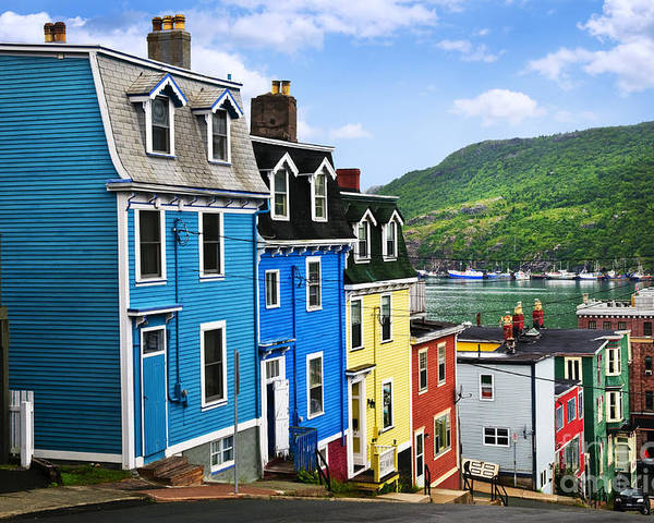 Street Poster featuring the photograph Colorful Houses In St. John's by Elena Elisseeva