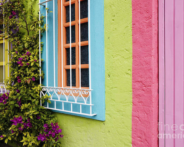 Apartment Poster featuring the photograph Colorful Walls by Jeremy Woodhouse