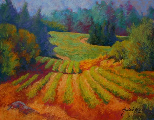 Pastel Poster featuring the painting Columbia Valley Vineyard by Marion Rose