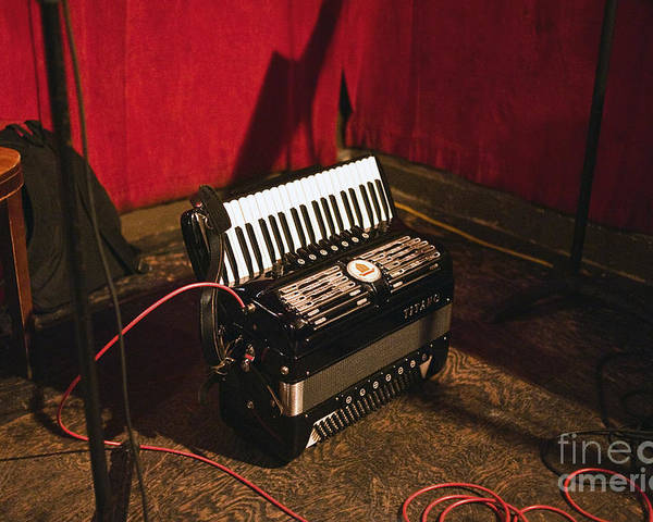 Accordion Poster featuring the photograph Concertina On The Floor by Eddy Joaquim