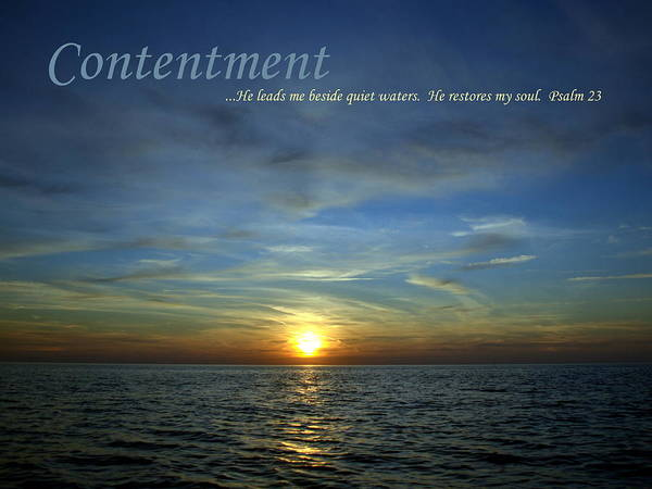 Contentment Poster featuring the photograph Contentment by Michelle Calkins