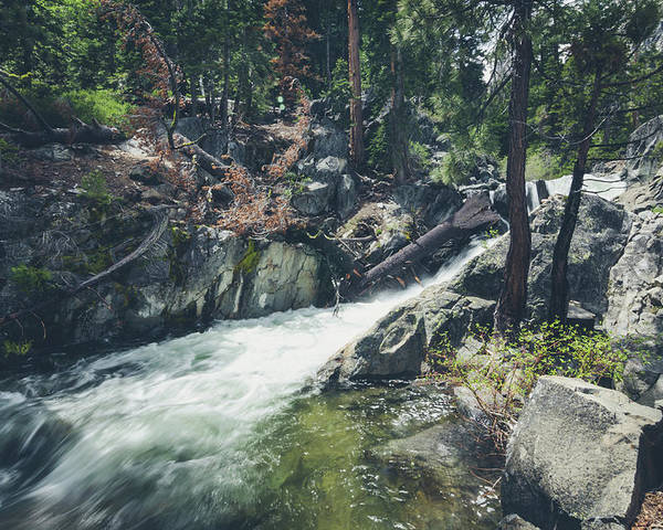 California Poster featuring the photograph Cool Mountain Stream by Margaret Pitcher