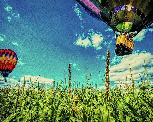 Farmland Poster featuring the photograph Cornfield View Hot Air Balloons by Bob Orsillo