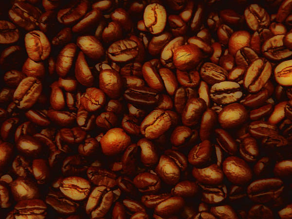 Coffee Poster featuring the photograph Costa Rican Coffee by LoungeMode Productions