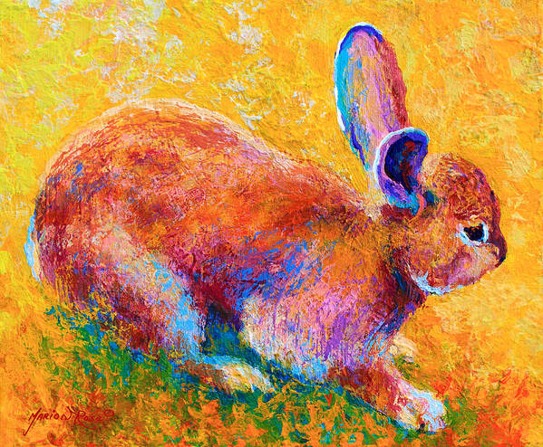 Rabbit Poster featuring the painting Cottontail II by Marion Rose