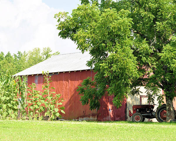 Barns Poster featuring the photograph Country Life by Jan Amiss Photography