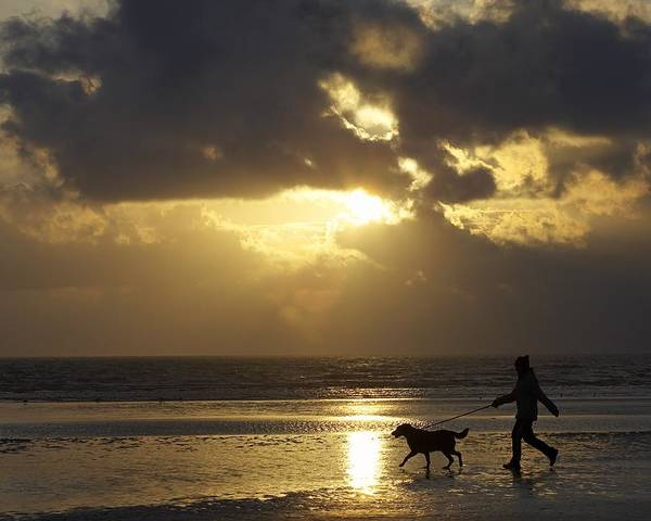 Animal Poster featuring the photograph County Meath, Ireland Girl Walking Dog by Peter McCabe