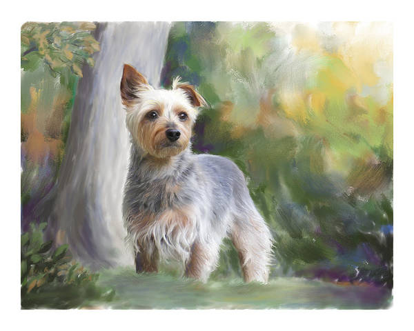 Dog Poster featuring the painting Courageous Curiosity by Connie Moses