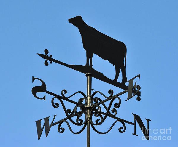 Cow Weathervane Weather Vane Silhouette Metal Black Poster featuring the photograph Cow Weathervane. by Stan Pritchard