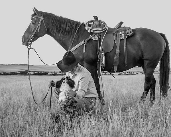 Cowboy Poster featuring the photograph Cowboy, His Horse And Dog by Daniel Hagerman