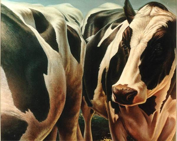 Cows Poster featuring the painting Cows 1 by Hans Droog