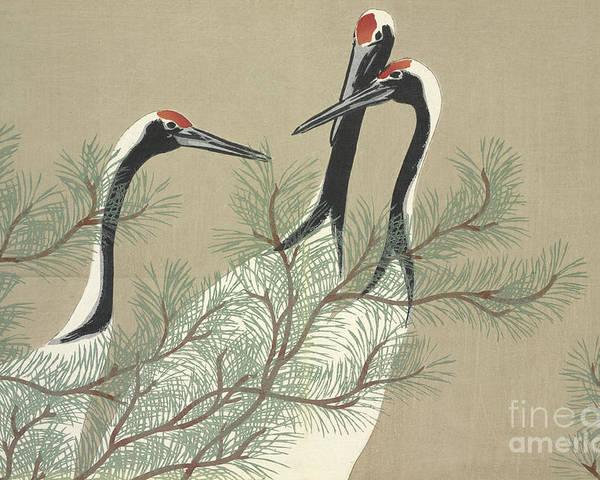 Crane Poster featuring the painting Cranes by Kamisaka Sekka