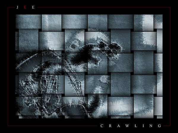 Crawling Poster featuring the photograph Crawling by Jonathan Ellis Keys