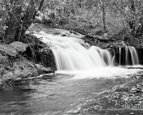 Waterfall Poster featuring the photograph Creek Merge Waterfall In Black And White by James BO Insogna