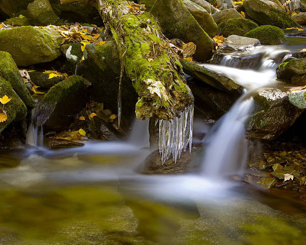 Winter Poster featuring the photograph Creek With Icicles by Richard Steinberger
