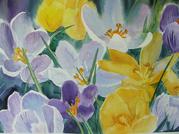 Spring Flowers Poster featuring the painting Crocus Circus by Dianna Willman