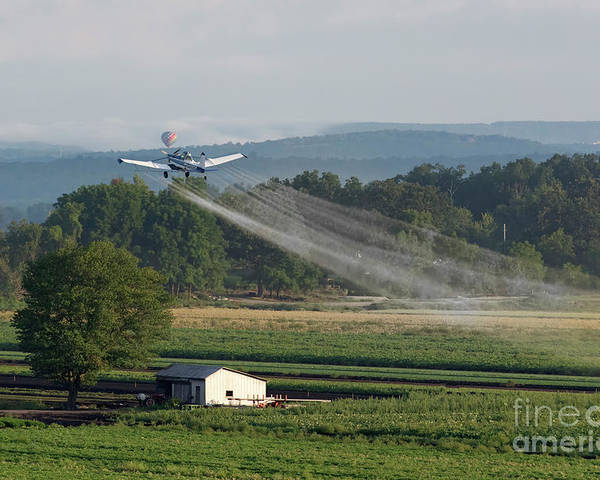 Crop Dusting Poster featuring the photograph Crop Dusting by Nicki McManus