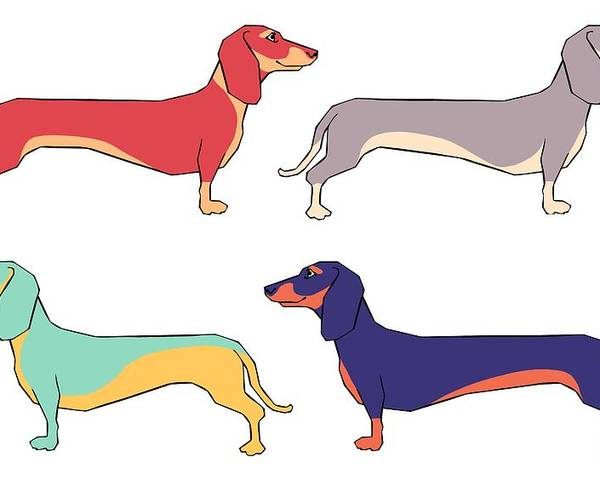 Dachshunds Poster featuring the digital art Dachshunds by Kelly King