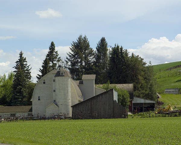 Barn Poster featuring the photograph Dahmen Barn Historical by Louise Magno