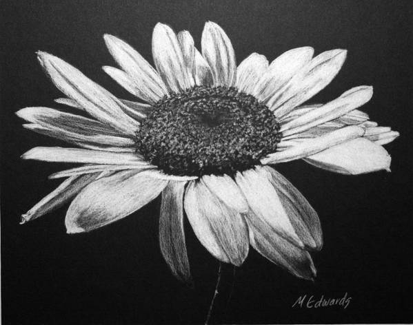 Daisy Poster featuring the drawing Daisy I by Marna Edwards Flavell