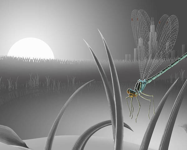 Landscape Poster featuring the painting Damsel Fly by Matt Upholz