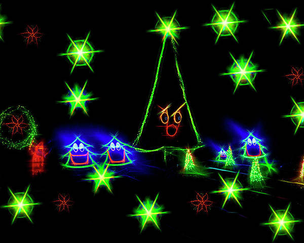 Greeting Card Poster featuring the photograph Dancing Christmas Trees by Kay Brewer