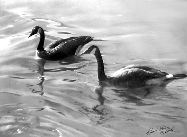 Canadian Geese Poster featuring the painting Dancing Reflections by David Vincenzi