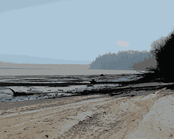 Poster featuring the photograph Dash Point by Rachel Vdolek