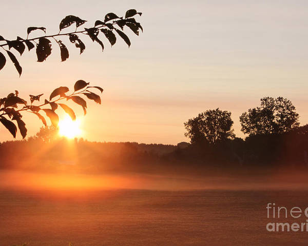 Morning Poster featuring the photograph Dawn Of A Brand New Day by Cathy Beharriell
