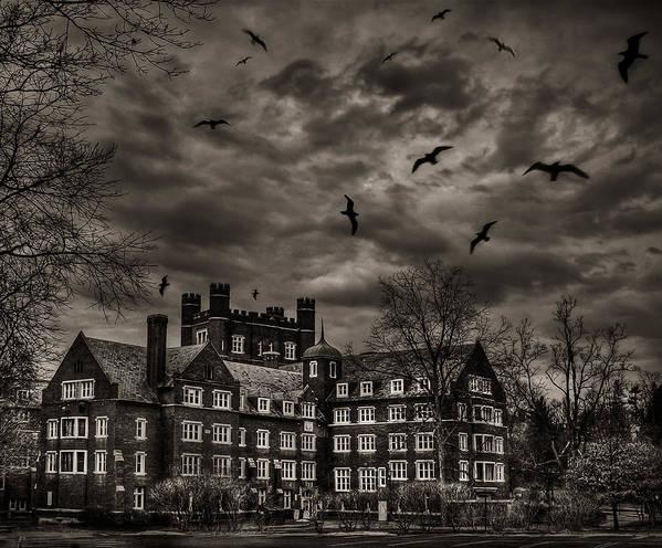 Dark Poster featuring the photograph Daydreams Darken Into Nightmares by Evelina Kremsdorf