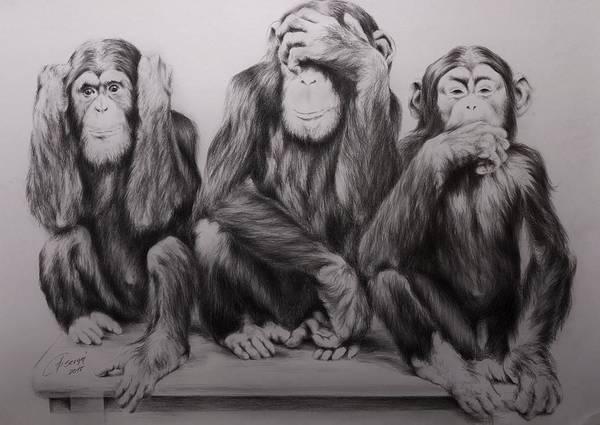 Three monkeys blind deaf mute dating
