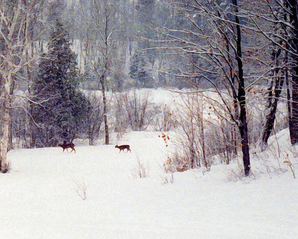Snow Poster featuring the digital art Deer By The Forest Db by Lyle Crump