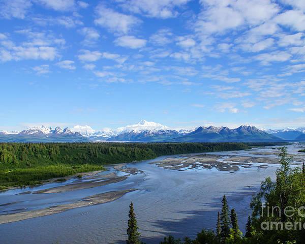 Alaska Poster featuring the photograph Denali State Park by Jennifer White