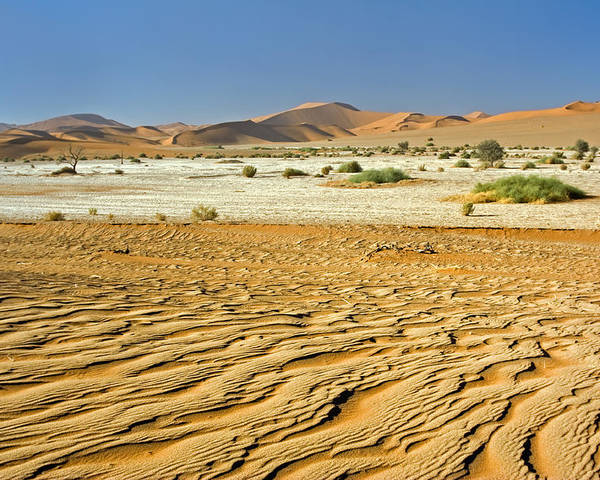 Texture Poster featuring the photograph Desert Texture In Namib-naukluft by Aivar Mikko