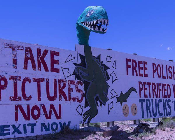 Roadside Dinosaur Poster featuring the photograph Dinosaur Sign Take Pictures Now by Garry Gay